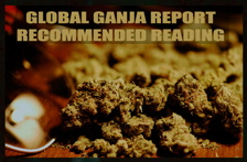 Global Ganja Report Recommended Reading